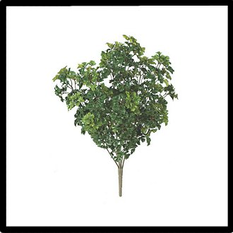 Artificial Shrubs & Artificial Bushes - Indoor