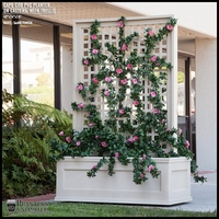 Azalea Trellis Space Divider in Cape Cod PVC Planter