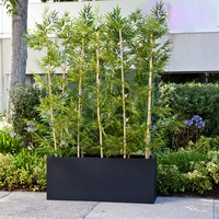 Bamboo Grove Privacy Screen in Modern Fiberglass Planter 72in.L x 12in.W x 72in.H, Outdoor Rated