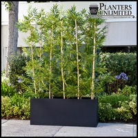 Bamboo Grove Privacy Screen in Modern Fiberglass Planter 96in.L x 12in.W x 72in.H, Outdoor Rated