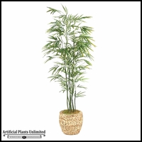 Bamboo Tree in Round Banana Leaf Basket, 9'