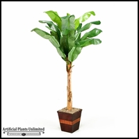 Banana Tree in Square Wooden Planter, 8'