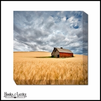 Barn Surrounded by Wheat Fields - Canvas Artwork