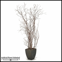 Birch Branches in Square Metal Planter, 6.5'