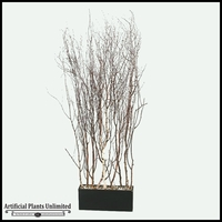 Birch Tree Tops Screen in Rectangle Planter, 6.5'