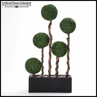Boxwood Ball Screen in Rectangle Planter, 6.5'