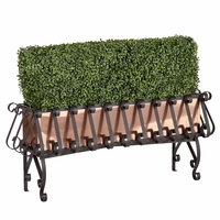 Boxwood Hedge in Real Copper-Lined European Iron Planter