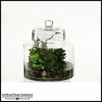 Butterfly Succulent and Easter Grass in Glass Jar with Lid, 10 in.