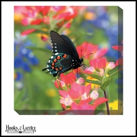 Colorful Flowers and Butterfly - Canvas Artwork