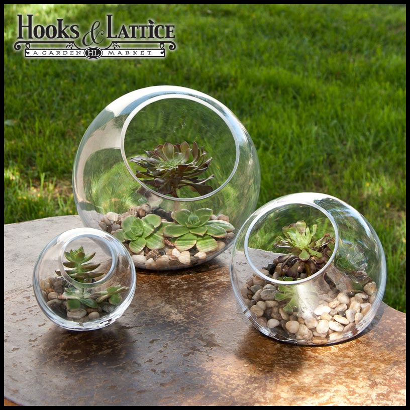 Tabletop Terrarium Glass Terrarium Containers Hooks