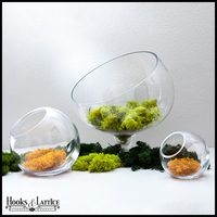 Contemporary Tabletop Terrariums