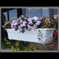 Countryside Window Box Liners 30""