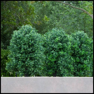 Custom Artificial Boxwood Bushes