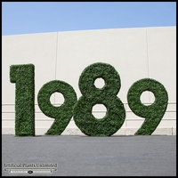 Custom Logo or Letter Boxwood Topiary Shape 36in. Tall x 6in Wide, Outdoor Rated