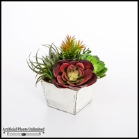 Echeveria and Tillandsia Mix in Rustic Wood Planter 7inLx7inWx11inH
