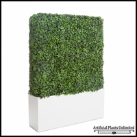 English Ivy Hedge in Modern Planter 24inL x 12inW, Outdoor