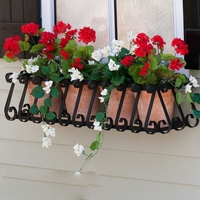 European Window Box Cage
