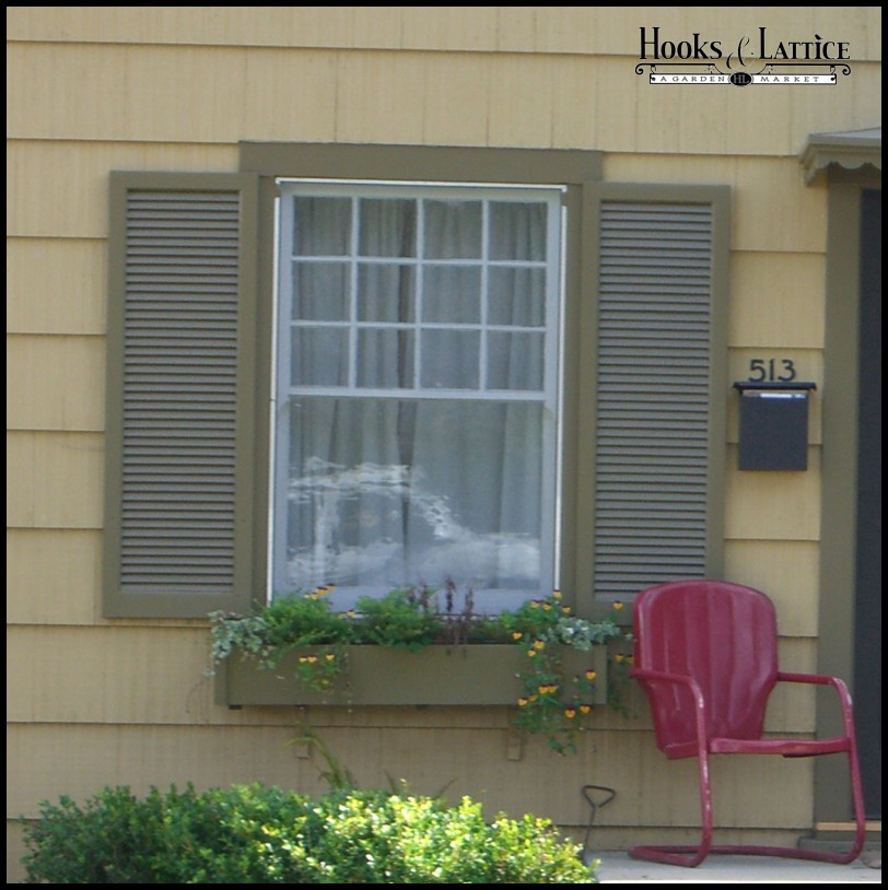 lovely image of outdoor shutters