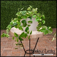 "Fire Retardant 28"" Pothos Bush"