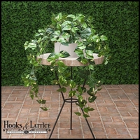 "Fire Retardant 36"" Pothos Bush"