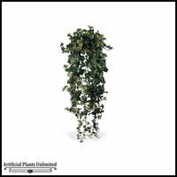 72in. German Needle Ivy Hang