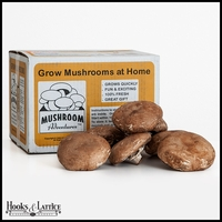 Giant Heirloom Portabella Mushroom Kit