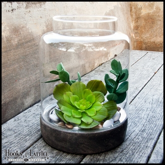 Glass and Stone Terrariums