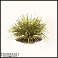 Grass in Flat Bowl, 30 in.