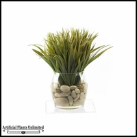 14in. Grass in Round Glass Dish