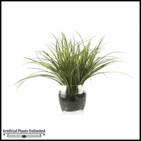 19in. Grass in Round Glass Dish
