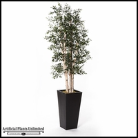 Green Olive Tree in Zinc Planter 7'