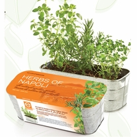 Herbs of Napoli Herb Kit