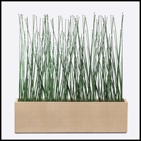 7'L Horsetail Grove in Modern Planter, Outdoor