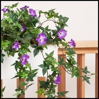 Indoor Artificial Flowers & Vines