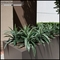 Indoor Artificial Plants - All