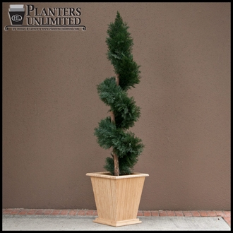 Juniper Artificial Spiral Topiary - 6' Outdoor