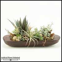 Large Oval Wooden Bowl with Mix Of Aloe, Succulents and Grasses, 16 in.