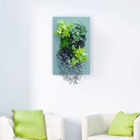 Living Wall Kit with Country Frame
