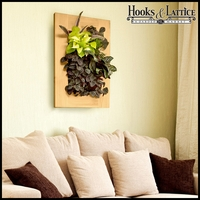Living Wall Kit with Rustic Frame