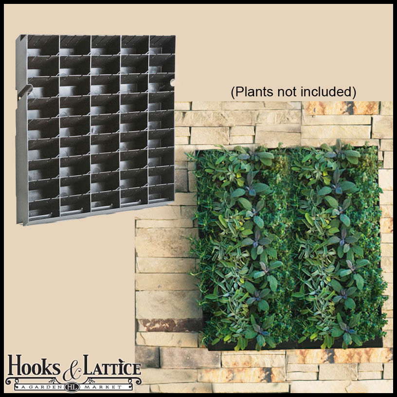 Living Wall Planter With Mounting Bracket 20 Quot W X 20 Quot H