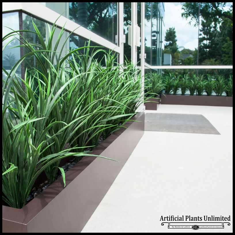 Lush Grass Hedge in Fiberglass Planter, Outdoor Rated