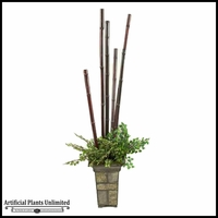 Maiden Hair Fern and Bamboo Poles in Square Metal Planter, 62 in.