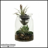 Mini Aloe Easter Grass and Tillandsia in Glass Jar with Glass Insert, 11 in.