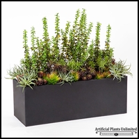 Money Plant and Succulent Space Divider in Black Planter 39.5inLx14inWx38inH
