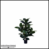 Multi Trunk Rubber Plant (4 Sizes, Colors)