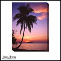 Oceanfront Palm Tree Silhouette at Sunset - Canvas Artwork