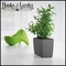 Office Planters