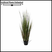 Onion Grass w/ Red Bamboo 4', 5' or 6'