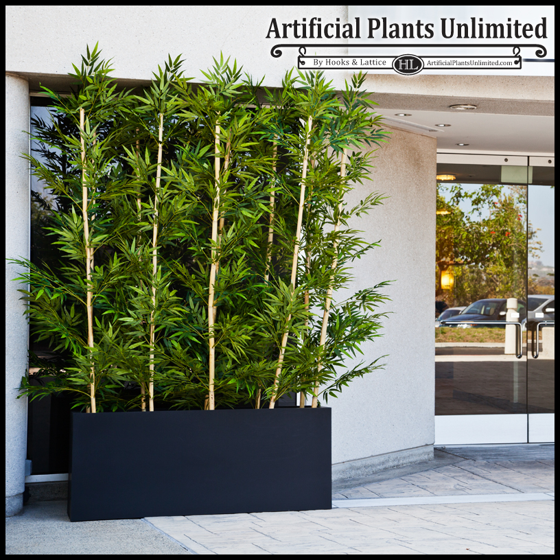 Artificial Patio Plants. Bamboo Plants For Privacy Screen 2017 2018 Best  Cars