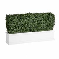 Outdoor Artificial Boxwood Hedges in White Window Boxes